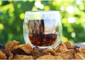 Chaga Tee auf Brocken